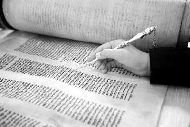 על שלושה ספרי תורה וחוט מקשר אחד